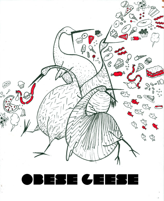 Obese Geese