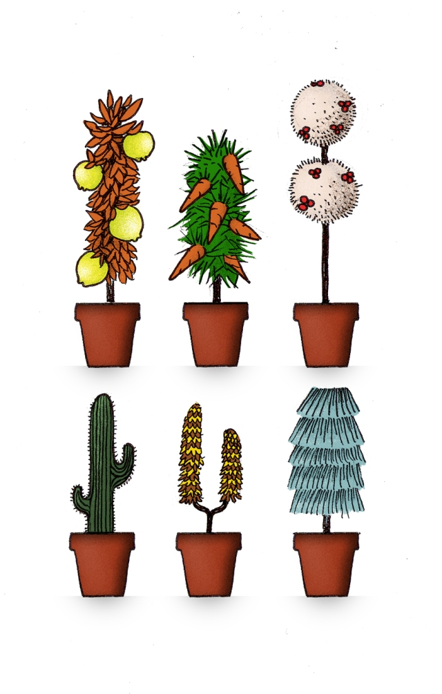 house-plants-vertical