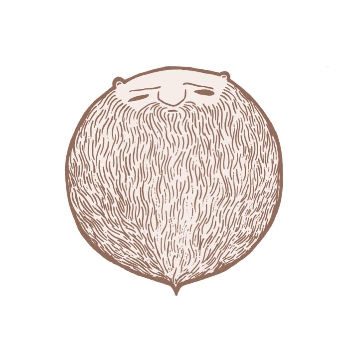 beardball